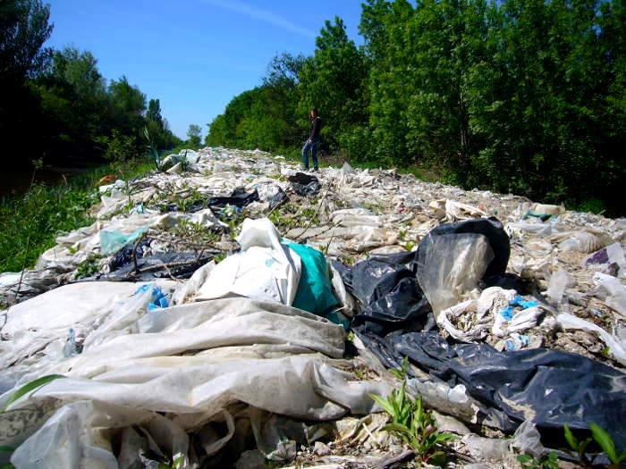 Les associations NACICCA, Agir pour la Crau, FNE PACA et FNE 13 envoient un courrier à la sous-préfecture d'Arles