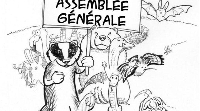 Assemblée générale 2019 le 12 décembre 2020